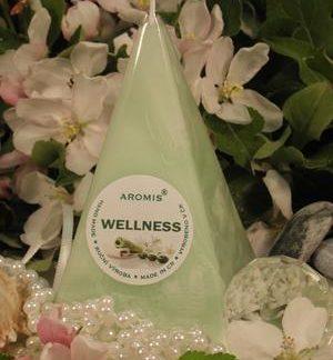 Aromatická svíčka Wellness jehlan